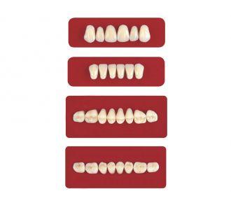 Акриловые зубы Unicryl боковые верхние форма 12 цвет A1 8шт