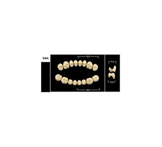 Зубы Yeti жевательные верхние, цвет B1, 8шт